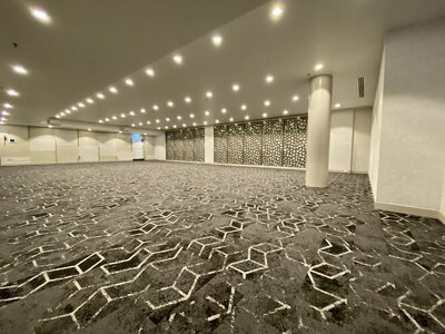 Ballroom Refubishment - Carpet; Decorative Acoustic Wall Panels, Painting